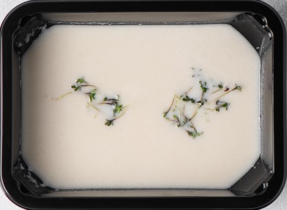 Суп-крем из запеченной цветной капусты с мускатным орехом